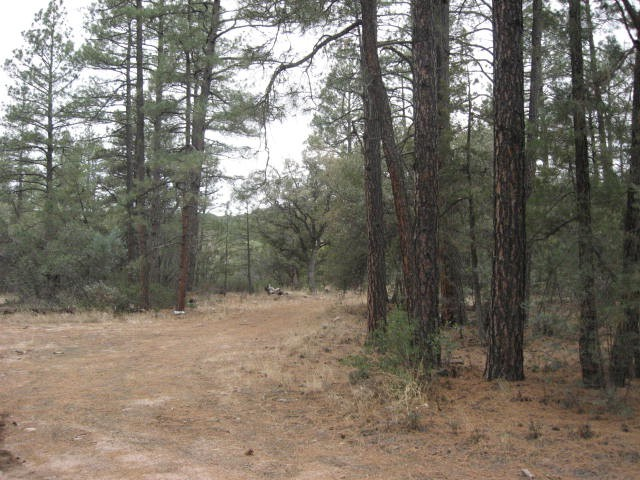 Young and Pleasant Valley, Arizona 85554 | Real Estate ...